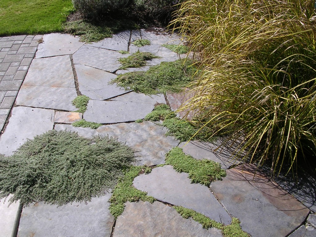 Flagstone Landscaping. Flagstone Patio Landscaping L