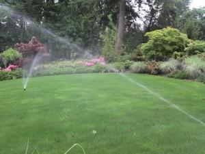 Landscape Sprinkler System